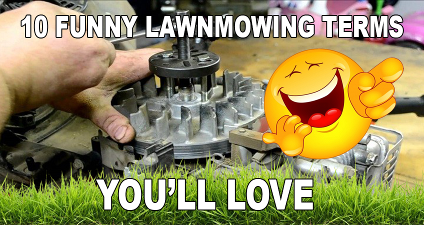Funny Lawnmower Terms & Words